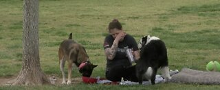 Emergency plans stressed for pet owners during coronavirus pandemic