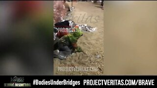 NEW VIDEO: Biden Border Facility Has Children Sleeping in Dirt Under a Bridge