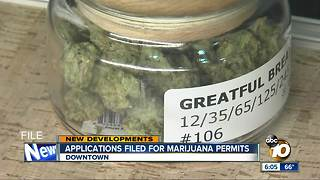 Applicants file early for marijuana permits