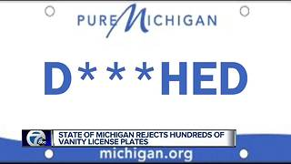 These are the rejected plates from Michigan SOS - Video