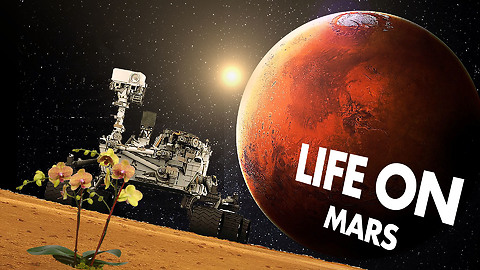 NASA finds traces of ancient life on Mars