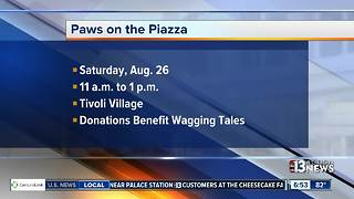Tivoli hosts Paws on the Piazza - Video