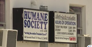Animal shelter reviews safety policy after deadly dog bite