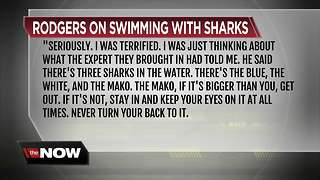 Today's Take: Swimming with the Sharks - Video