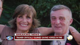 Trainer critically burned trying to save horses - Video