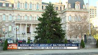 Christmas tree arrives at Baltimore City Hall - Video