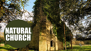 Incredible video of church which has been reclaimed by nature