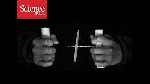 Cheap paper centrifuge based on a toy