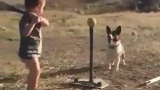 Two Cute Friends Playing Baseball - Video