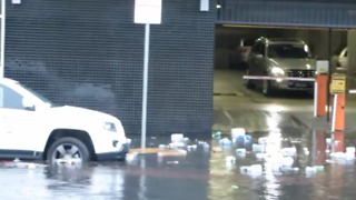 Garbage Floats Down Floodwaters in Melbourne Street - Video