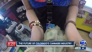 Future of Colorado's cannabis industry - Video
