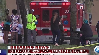 Child pulled from water in suburban West Palm Beach