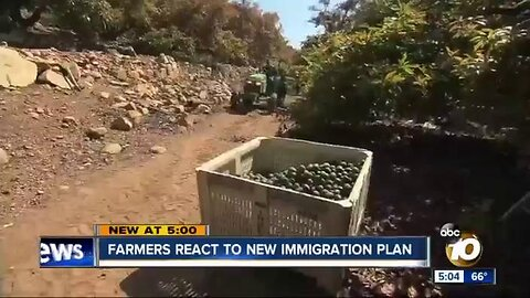 Farmers react to new immigration plan
