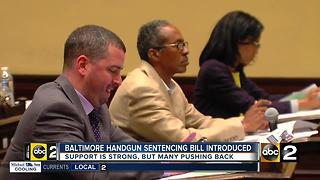City Council introduces gun bill - Video