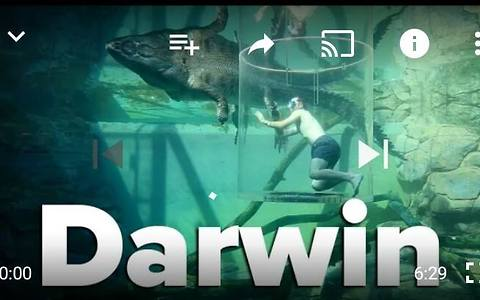 5 Things to do in Darwin, NT