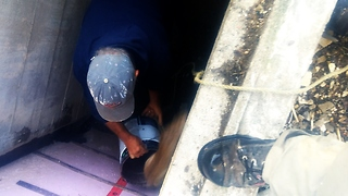 Contractors Dismantle Porch To Rescue Trapped Rabbit - Video