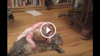 The most patient and docile cat ever! - Video