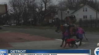 Photo shows man on horse walking dog in Detroit - Video