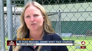Dogs found in terrible conditions