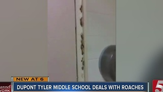 Video Of Bugs In Metro School Raises Concern - Video