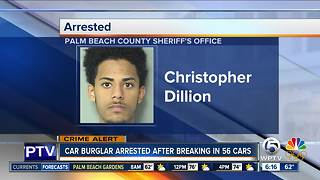Suspect accused of 56 car burglaries in Royal Palm Beach - Video