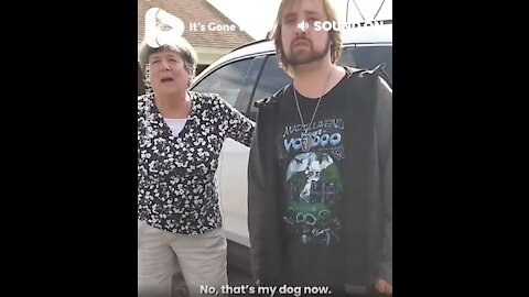 Dog Thieves Confronted By Owner