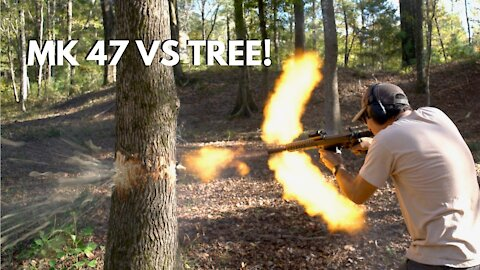 Shooting Down a Tree with a MK47