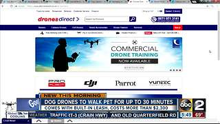 Want a drone that can walk your dog? - Video