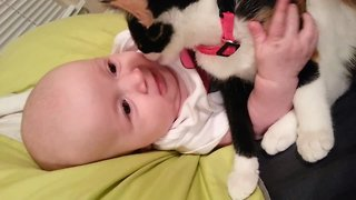So Sweet – Kitten Loves Baby!