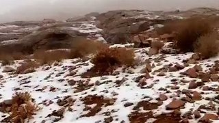 Saudi Mountain Gets a Rare Covering of Snow - Video