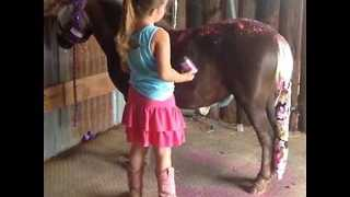 Young Girl Covers Her Pony in Pink Glitter - Video