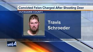 Convicted felon charged after shooting deer - Video
