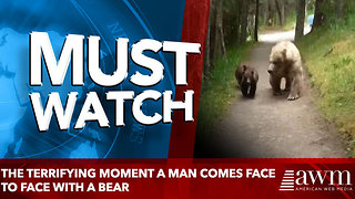 The terrifying moment a man comes face to face with a bear - Video