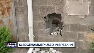 Man in custody after sledgehammer used in break-in at metro Detroit business - Video