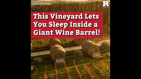 This Vineyard Lets You Sleep Inside a Giant Wine Barrel!