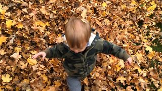 Boy Gets Lost In Giant Leaf Pile - Video