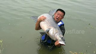 Sportfishing master catches giant black carp - Video
