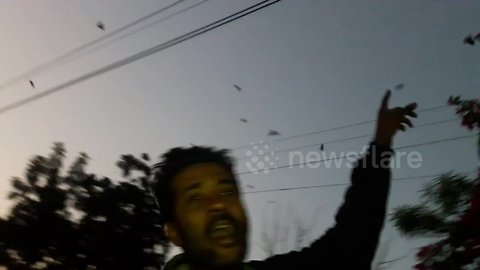 Indian stuntman summons hundreds of crows with his voice