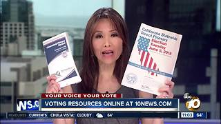 Voting resources are available online