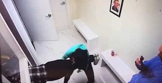 Young woman gets stuck playing hide-and-seek