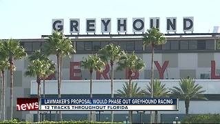 Tampa Bay lawmakers want Greyhound racing tracks shuttered - Video
