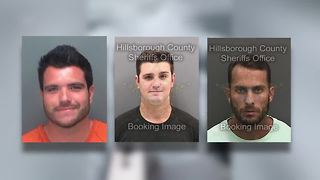 FWC charges 3 men in connection to viral shark dragging video - Video