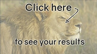Animal Quiz: Poor Score - Video