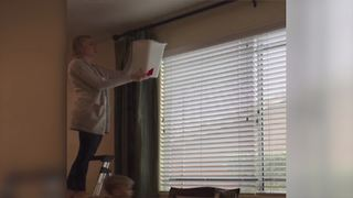 Family Makes A Plan To Catch A Mouse - Video