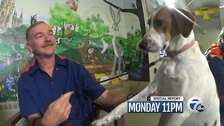 Monday: Prison Dogs - Video