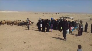 Civilians Fleeing from Fighting Near Uqayribat Struggle to Survive in Syrian Desert - Video