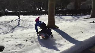 Little Girl Fails At Sledding