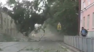 Man Runs to Avoid Falling Branches in Moscow Storm - Video