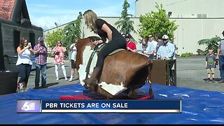 Our Anna Silver joins in on a celebrity bull riding competition