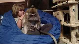 Monkey and Her Human Friend Help Keep Each Other Clean - Video
